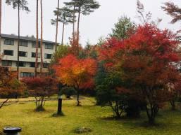 ホテル内庭園